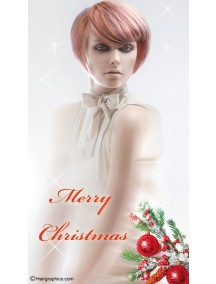 Banner BXM-0001 Merry Christmas OUTLET